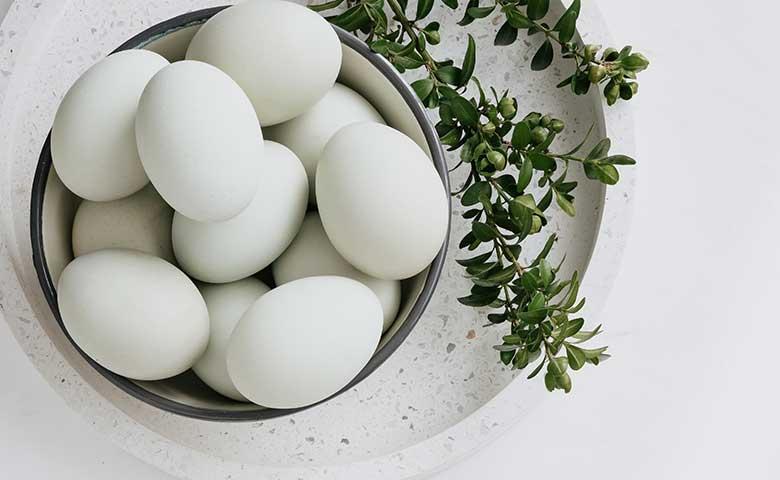 日本の卵消費量は世界○位?